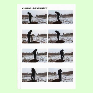 The Walking Eye